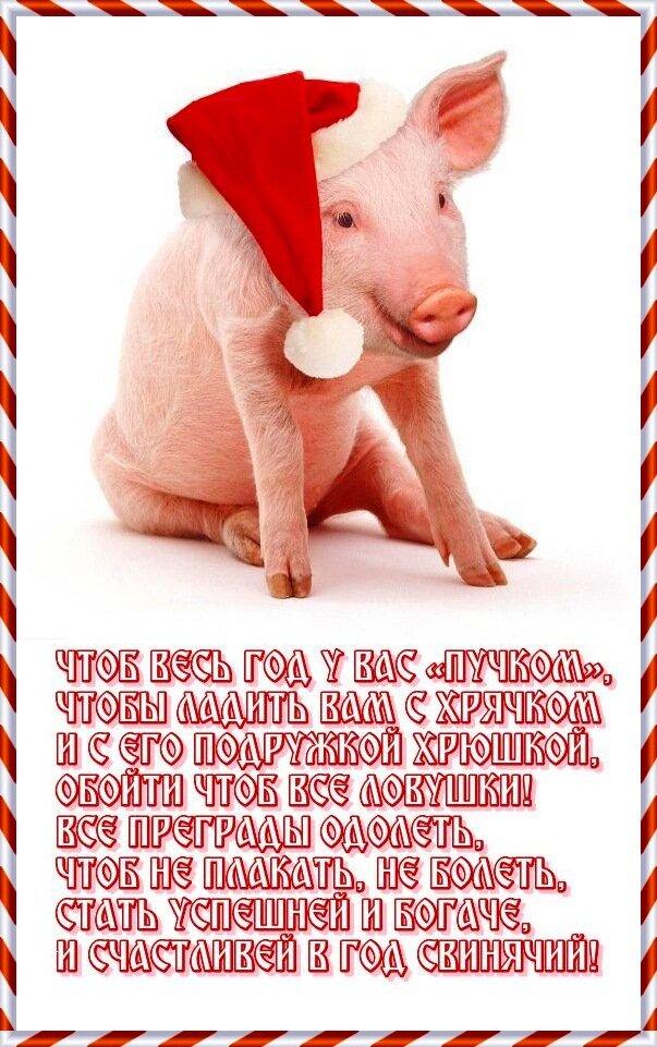 тату, изображающее прикольное поздравление с наступающим новым годом свиньи модельеры придумали