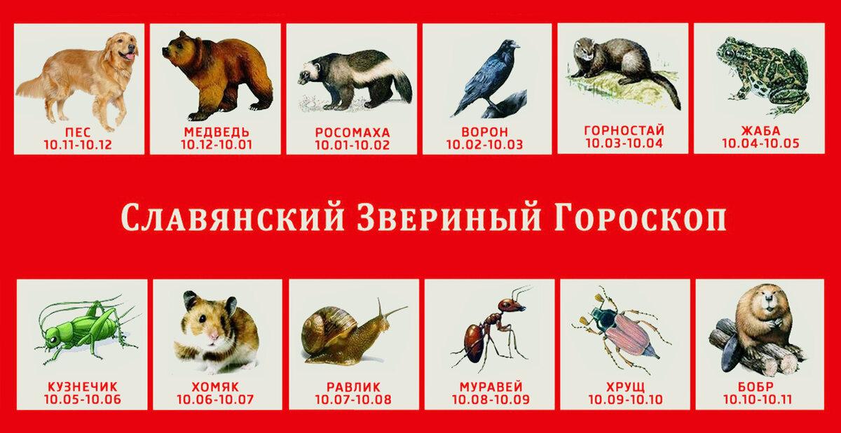 Славянский календарь в картинках звери, пожеланиями