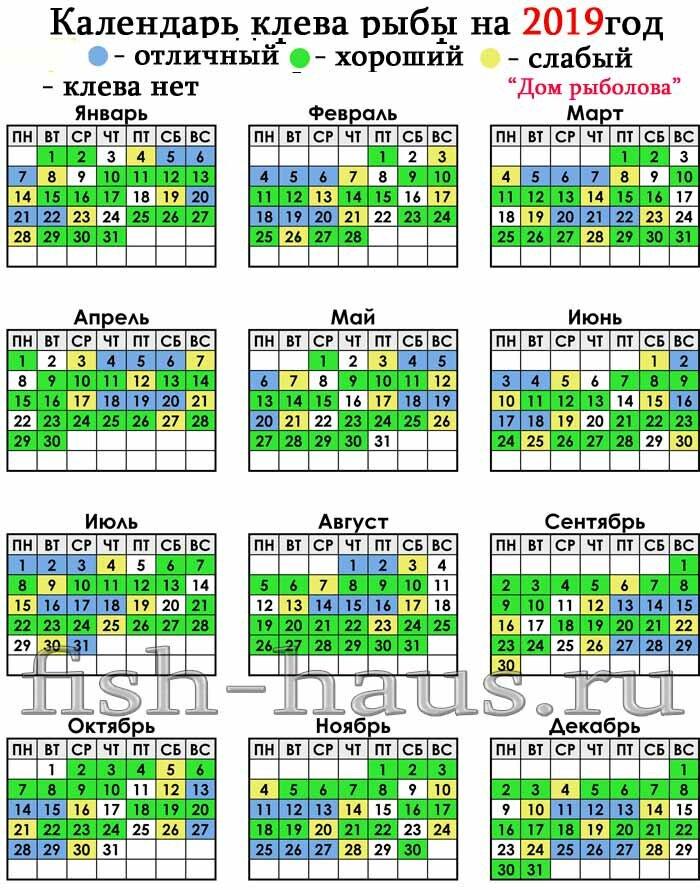 Календарь клева рыбы на 2019 год по месяцам и дням