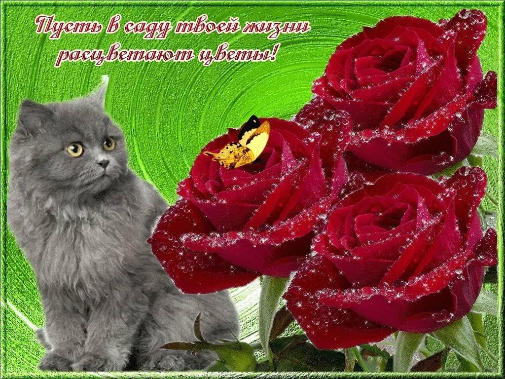 открытка анимация красивые цветы для тебя разное время