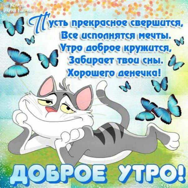 Открытки прикольные с пожеланиями доброго утра и хорошего дня