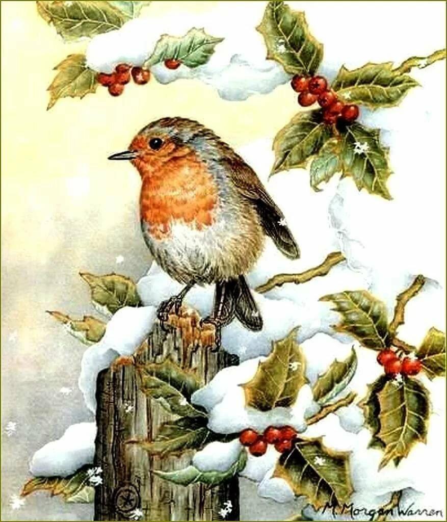 Новогодние птички открытки