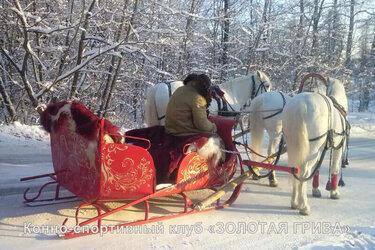 тройка лошадей запряженная в сани