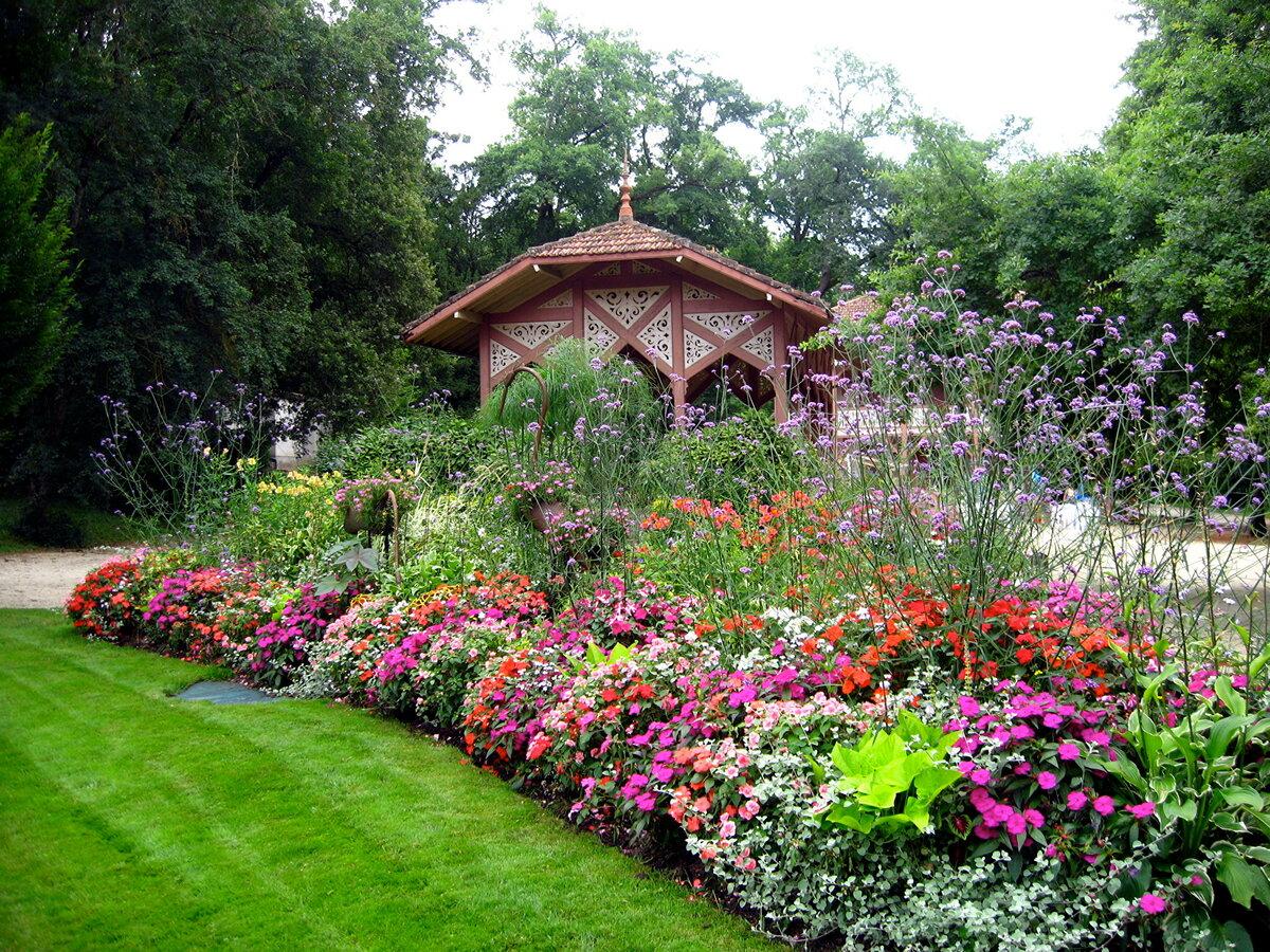 дачные сады цветники фото любителей никто