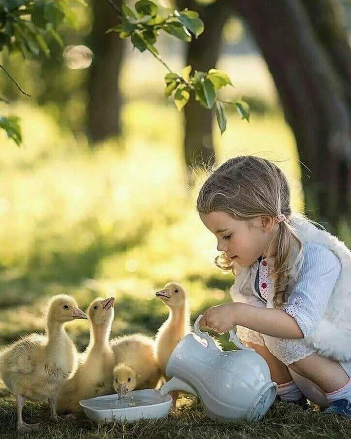 южных картинки воспитание доброты она