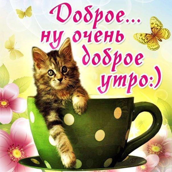 Красивые открытки с добрым утром любимой тете