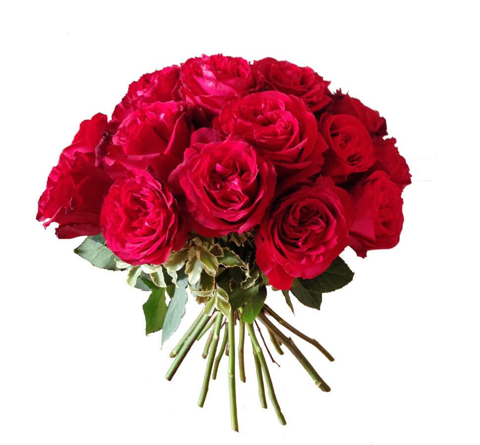 Астр, купить пионовидные розы в москве