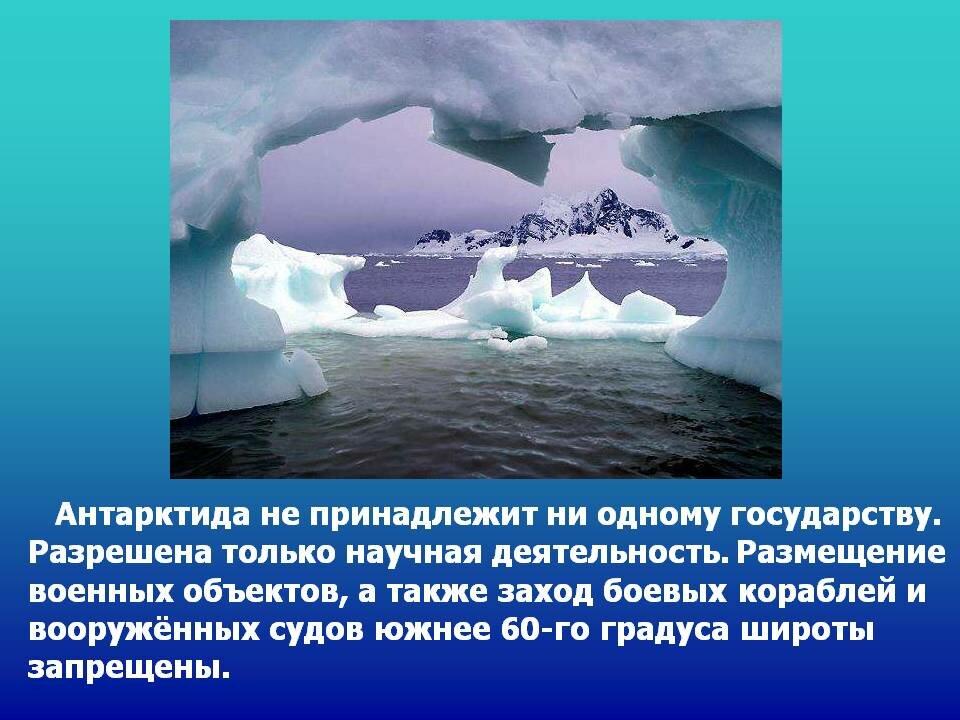 информация об антарктиде с картинками профессионал