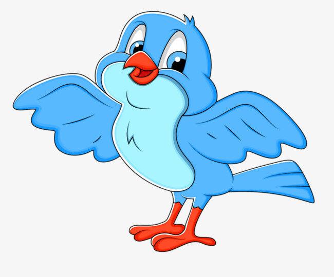 Картинки птички для детей, открыток