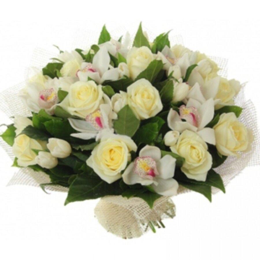 Букет орхидей петербург, саженцы розы нижний