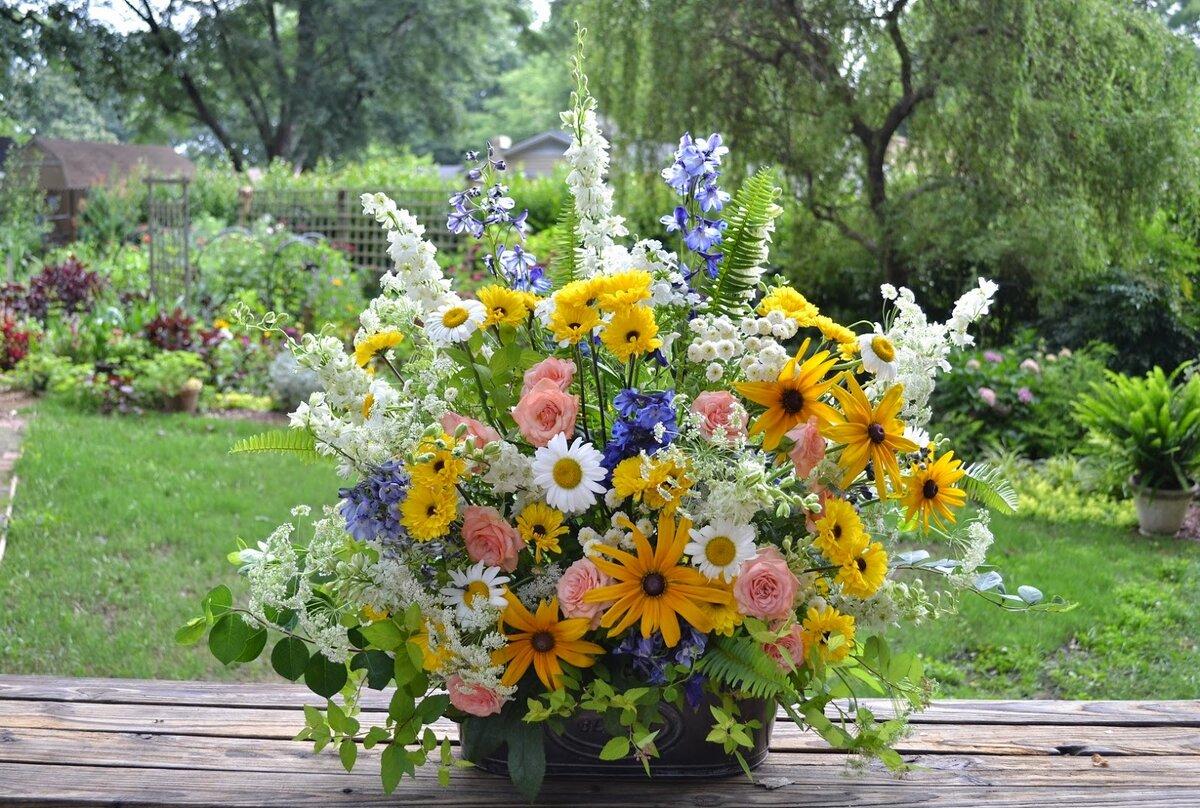 Открытки садовых цветов, картинки
