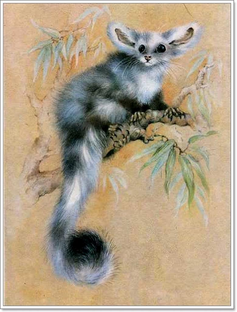 История открыток с животными