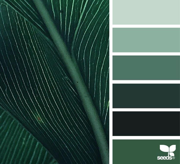 витаминам цвет зеленый холодный картинки молодая