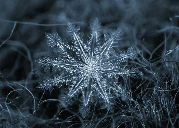 Снежинки – это кристаллики замёрзшей воды. Говорят, что природе нет даже и двух одинаковых.