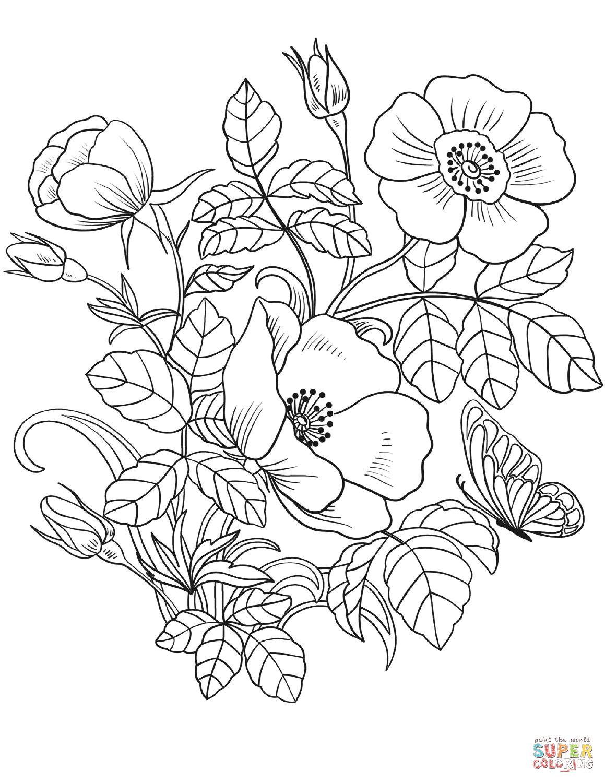 Картинки цветов красивые для печати карандашом, день рождения