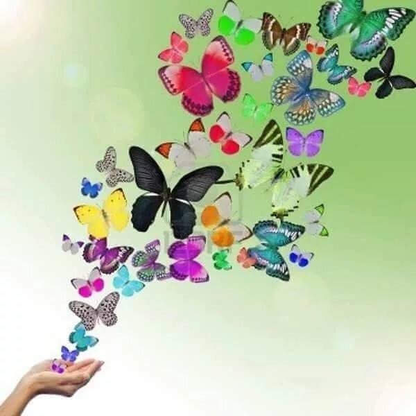 Картинка бабочки из рук