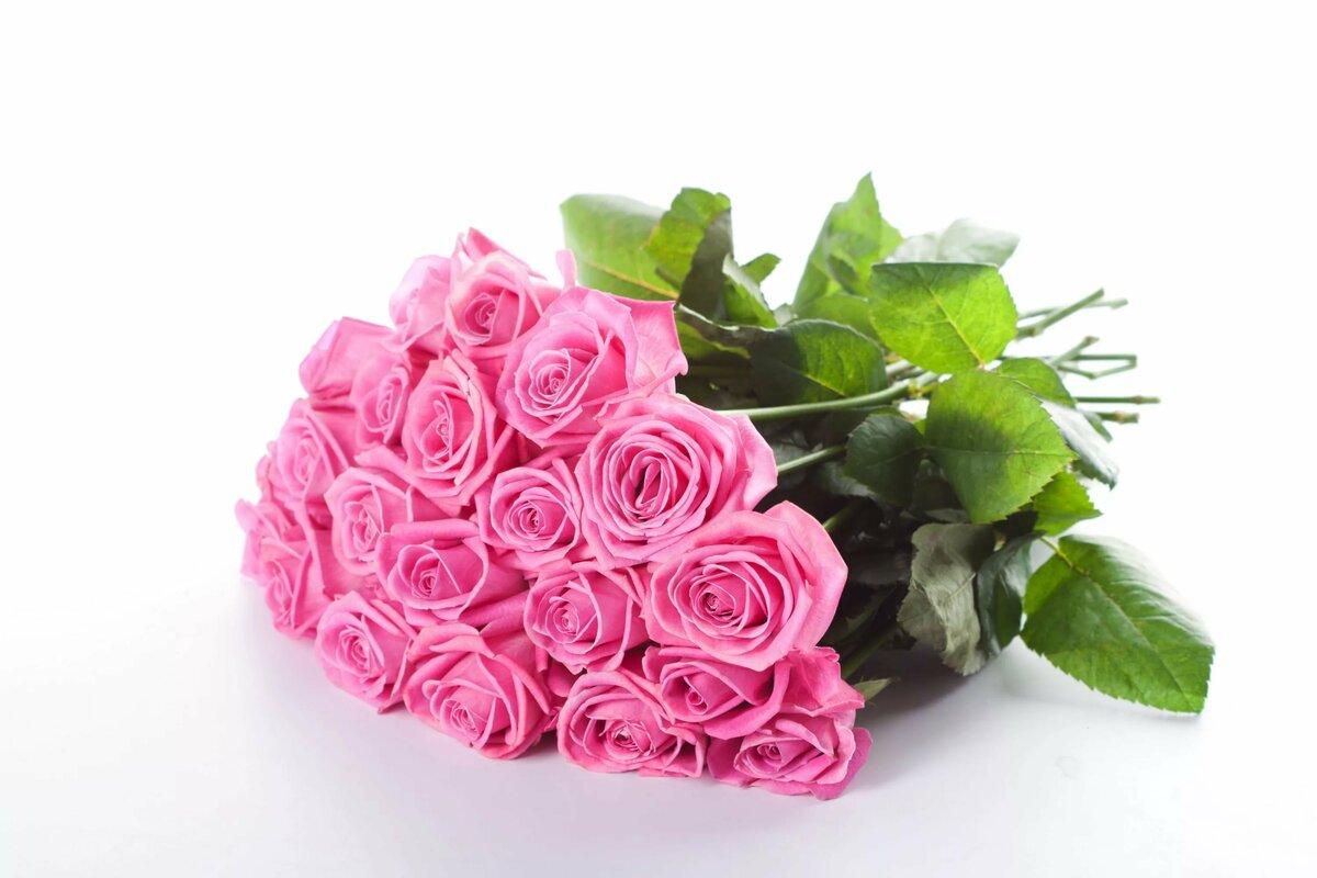 Анимации, цветы открытка роза