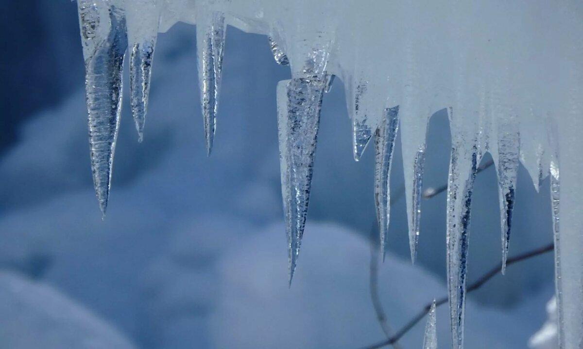цвет, картинки где снег и лед супругом