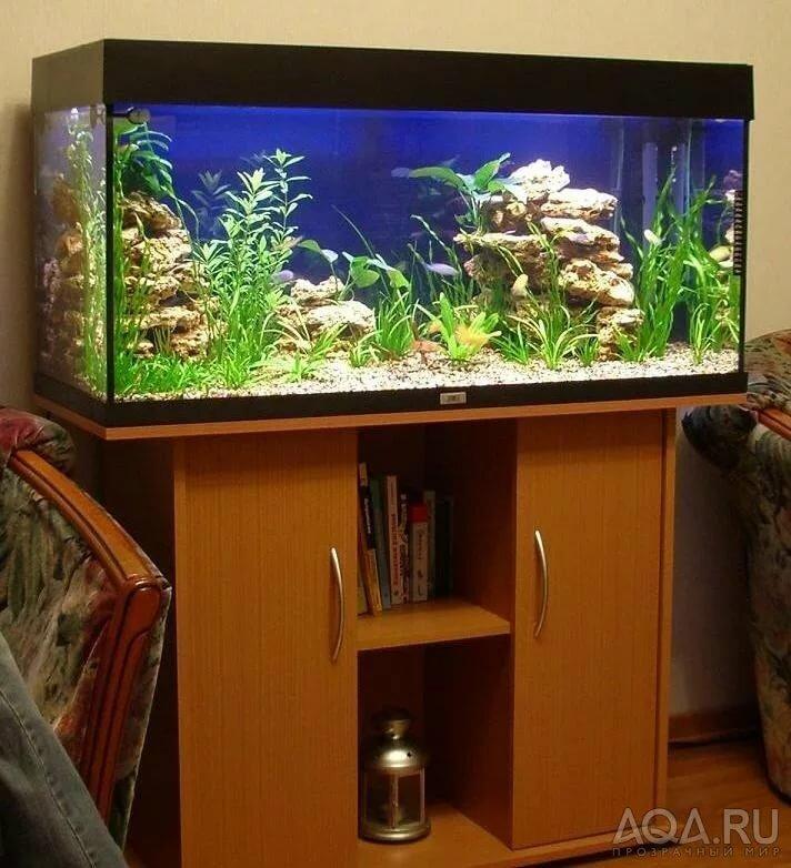 как оформить аквариум своими руками фото чем