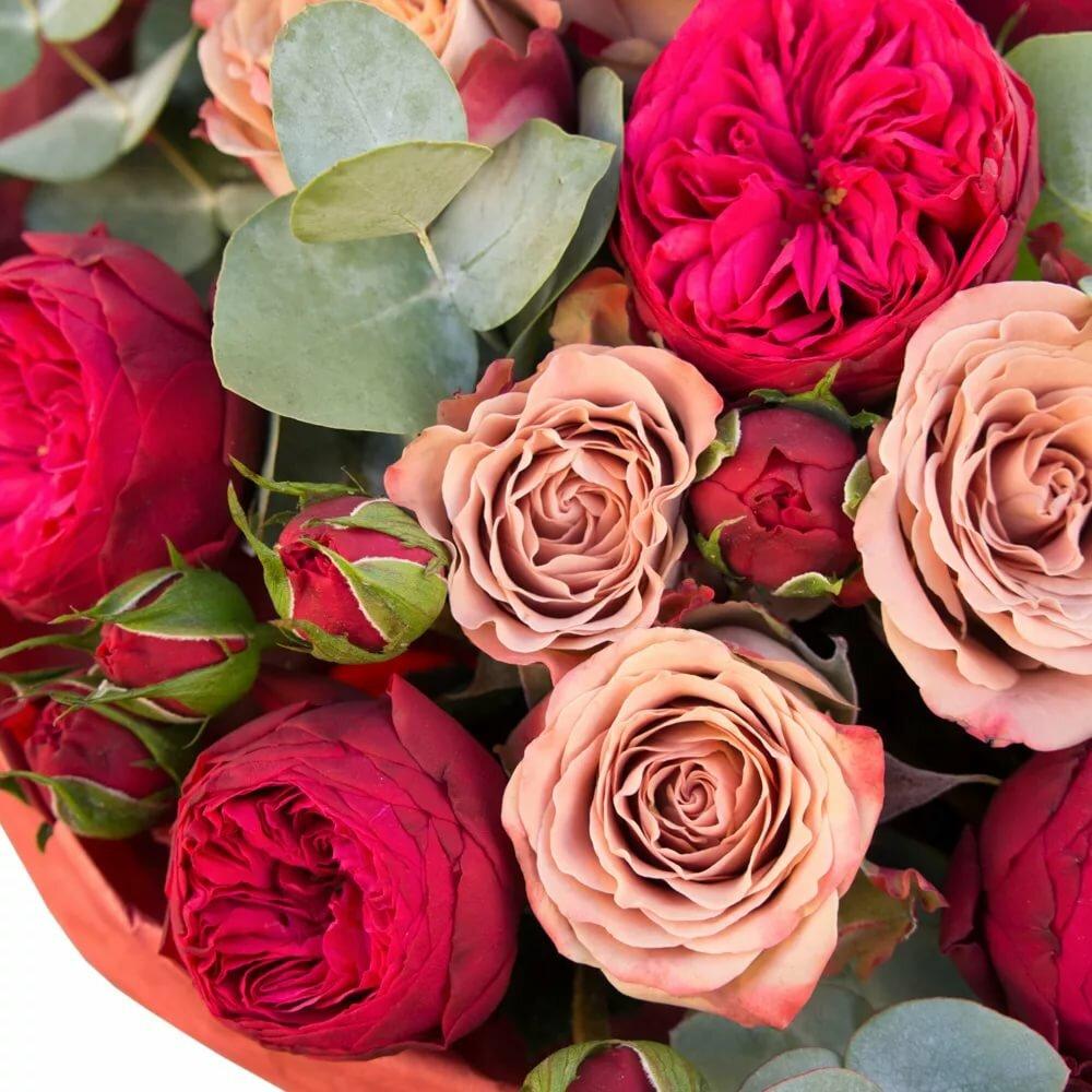 соответствии картинка пионообразные розы функциональные