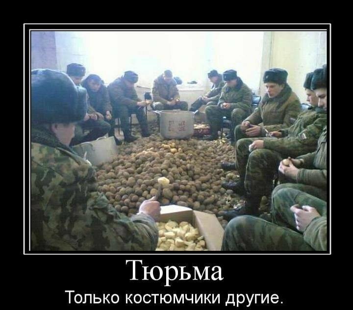 Смешные картинки про питание в армии, марта коллегам