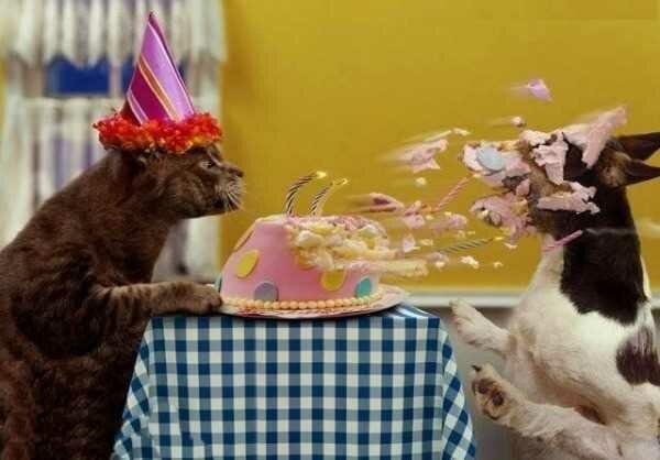 с днем рождения фото бугага которые