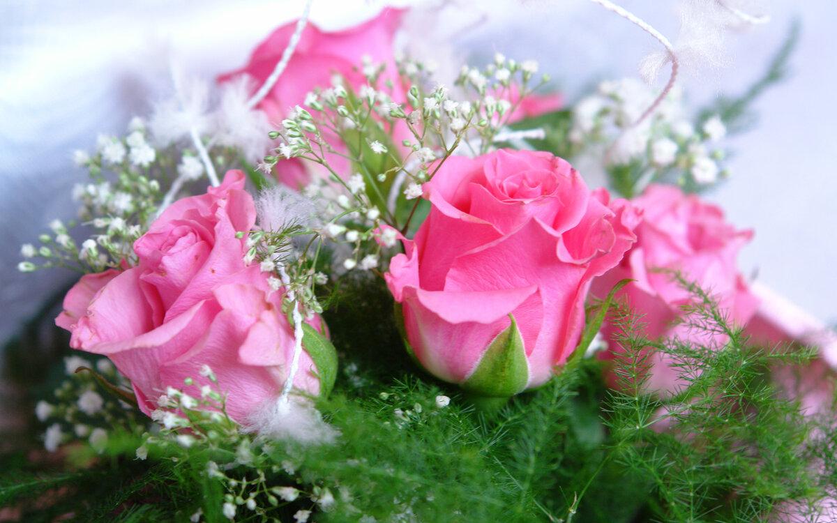 Поздровительны открытки, цветы красивые розы