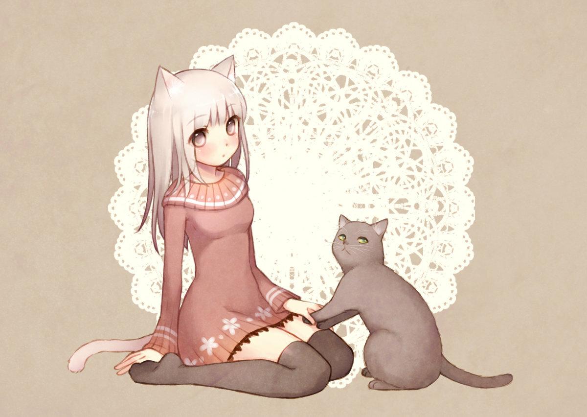 Картинки с котами аниме