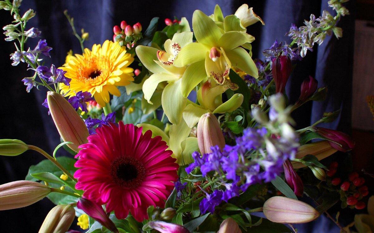 Цветы на н картинки