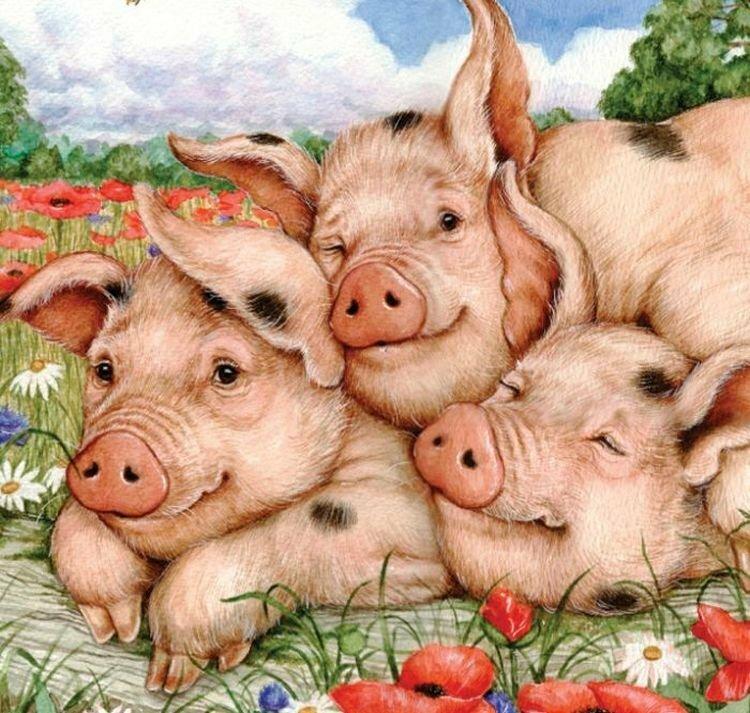 Для самых, смешные рисунки на новый год 2019 год свиньи