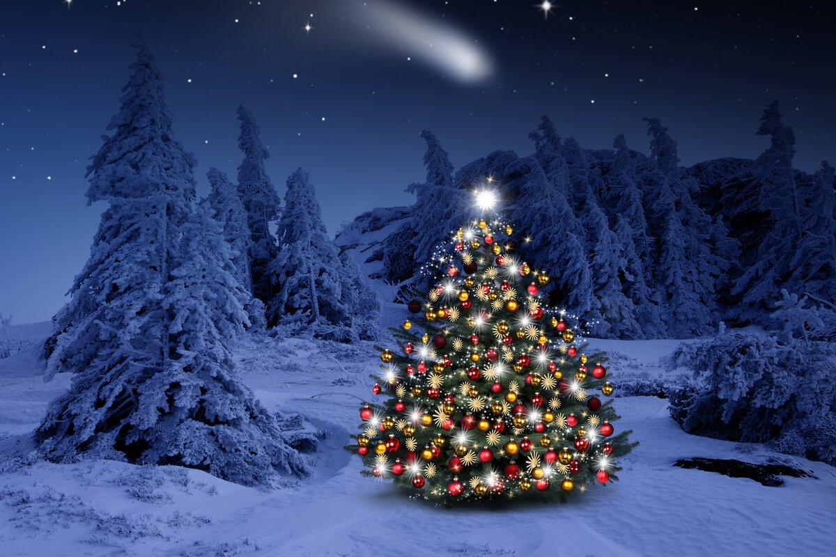 Новый год картинки елка
