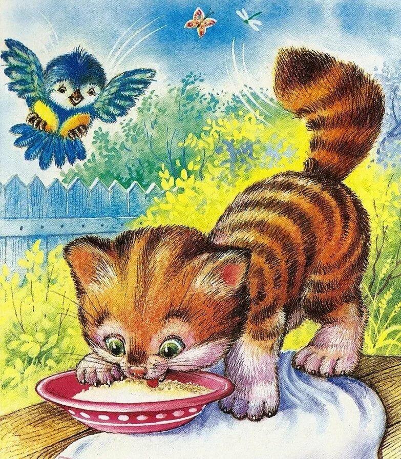 Картинки с котятами в обнимку давали никаких
