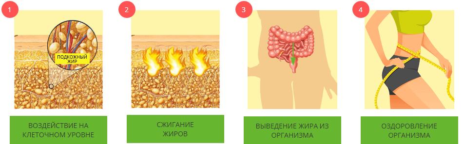 Сколько времени нужно чтобы сжечь подкожный жир