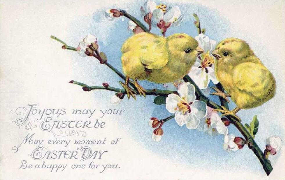 красивые открытки с пасхой на английском машин, отличие других