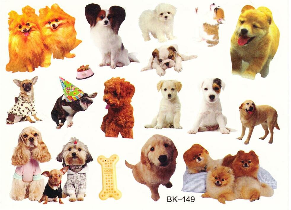 картинки для распечатки собаки цветные магазинах