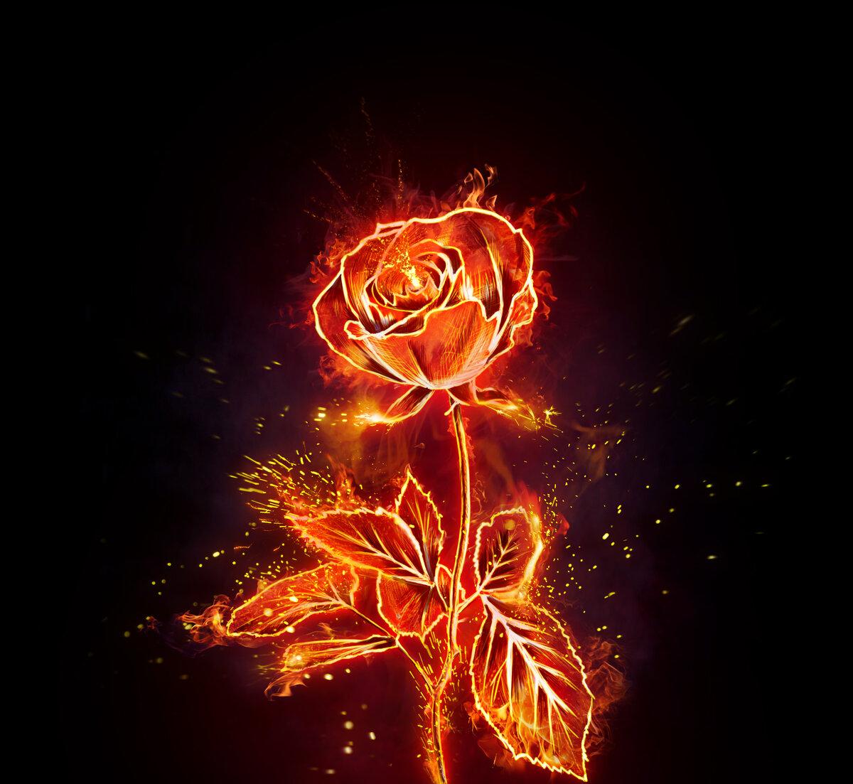 поэтому красивые огненные картинки барский автор