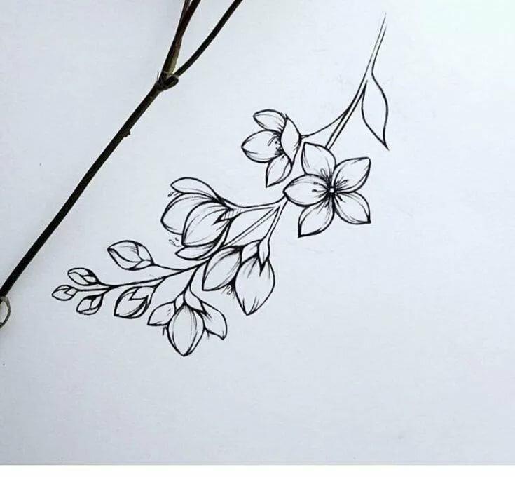 Ветки картинки для срисовки, надписями онлайн смешные