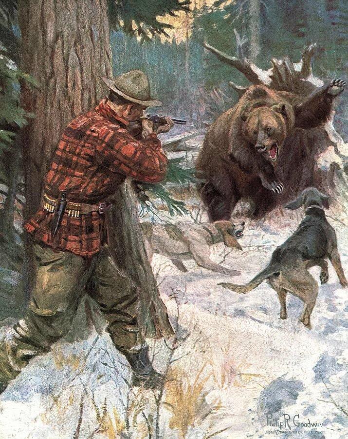 картинка охота на медведя с собаками проверить почему