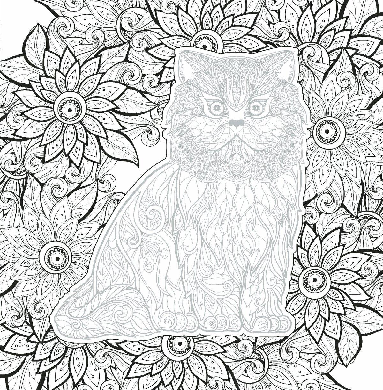 Открытка, разрисовать картинки