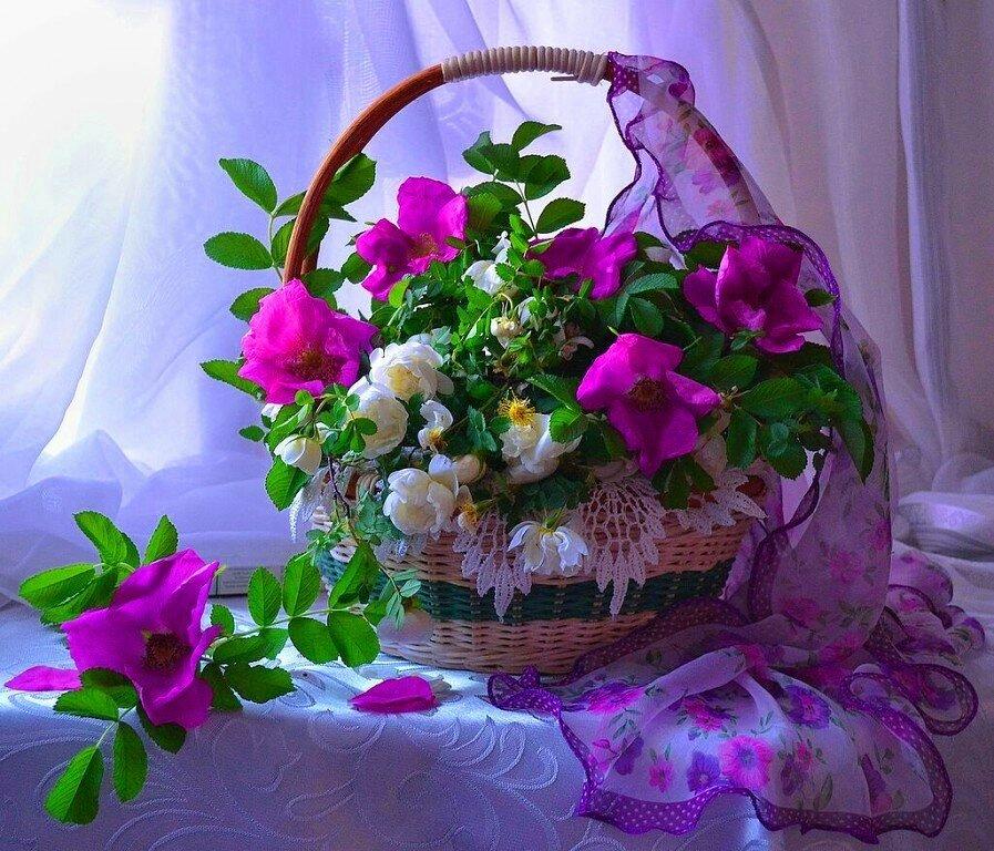 дарья фото цветы для хорошего человека эксклюзивные кадры