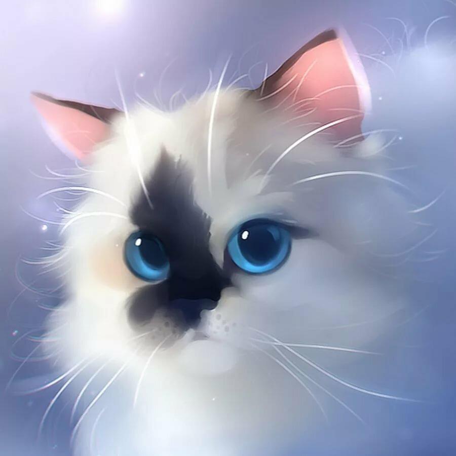 Арты котиков милых и няшных
