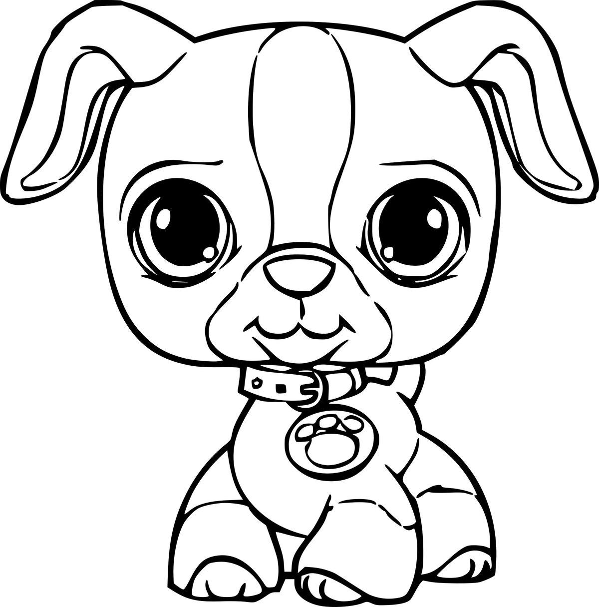 Картинки с маленькими собачками нарисованными, класс открытка