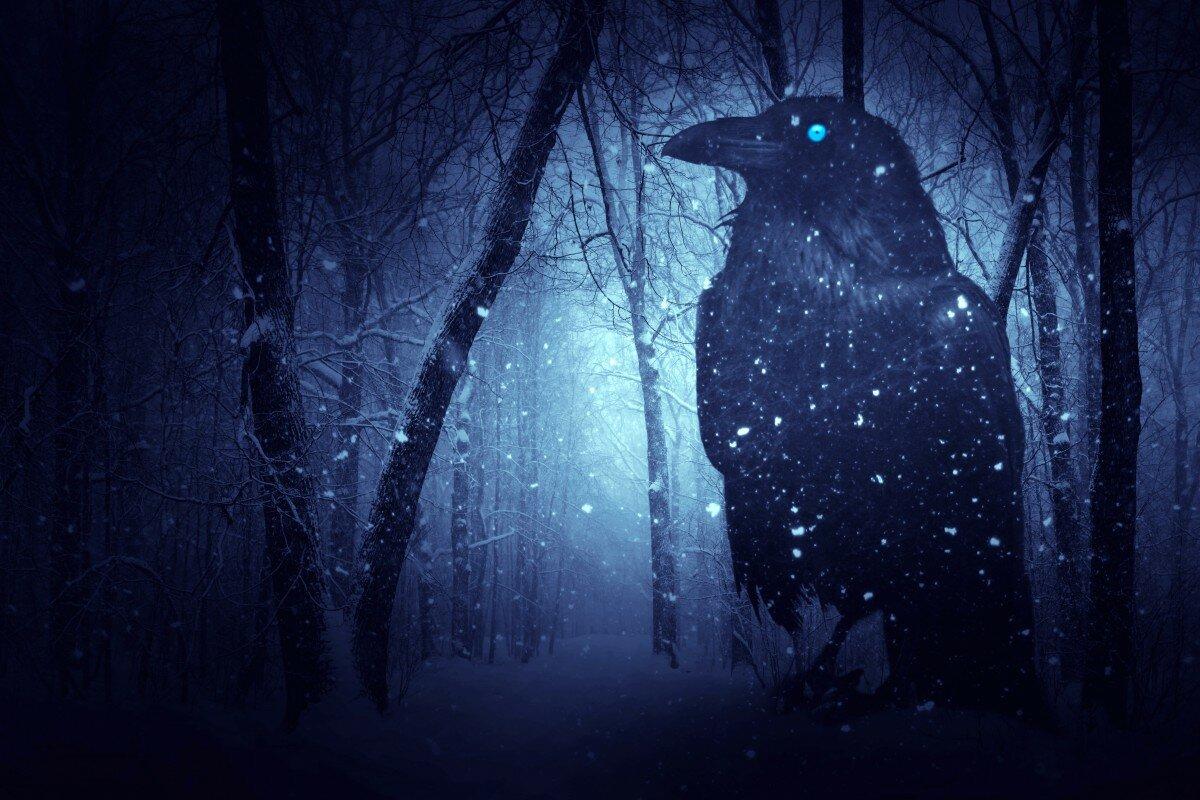 Картинки мистические вороны