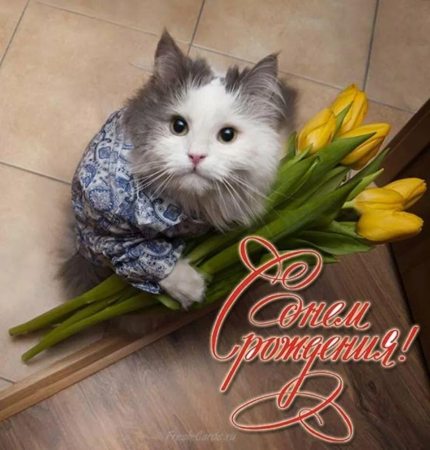 Картинки с днем рождения женщине красивые и прикольные фото, сайты интернет днем
