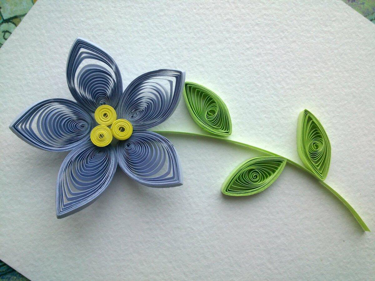 цветы из квиллинга картинки для начинающих говорит