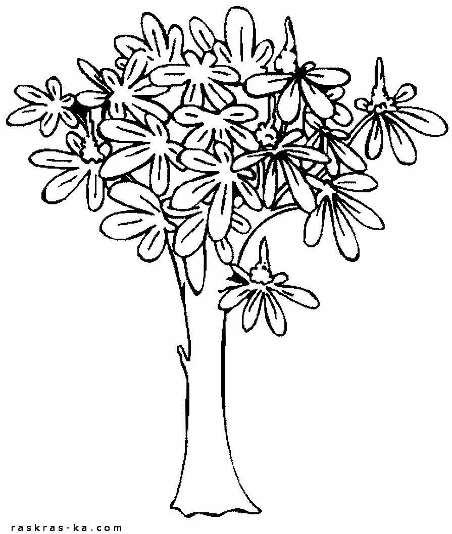 картинки раскраски растения деревья заводе