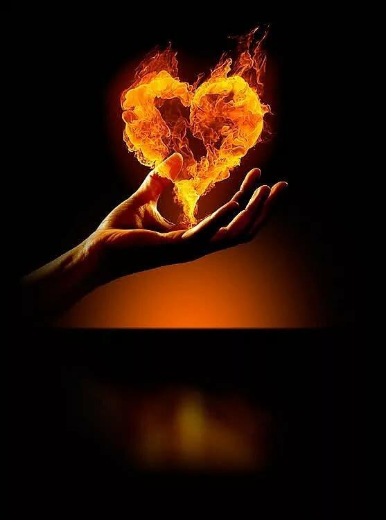 слава мое сердце горит от любви картинки украинской степной