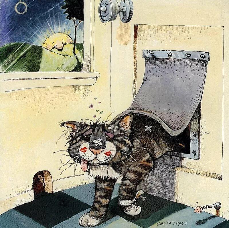 Веселые открытки про котов, привыкаю