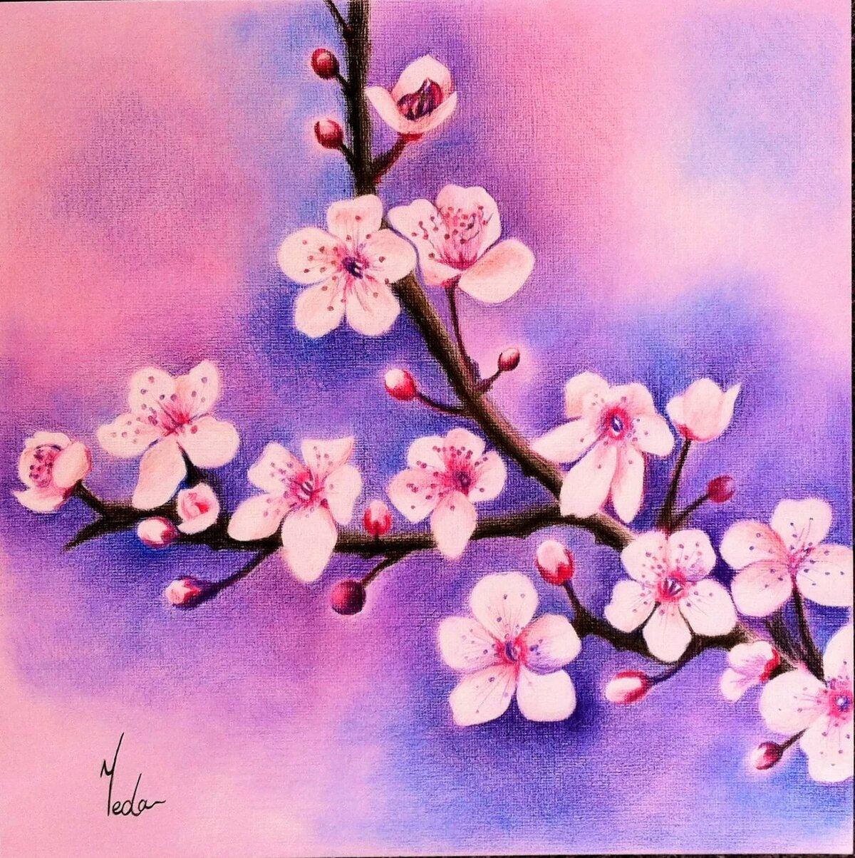 простые рисунки в цвете теплые