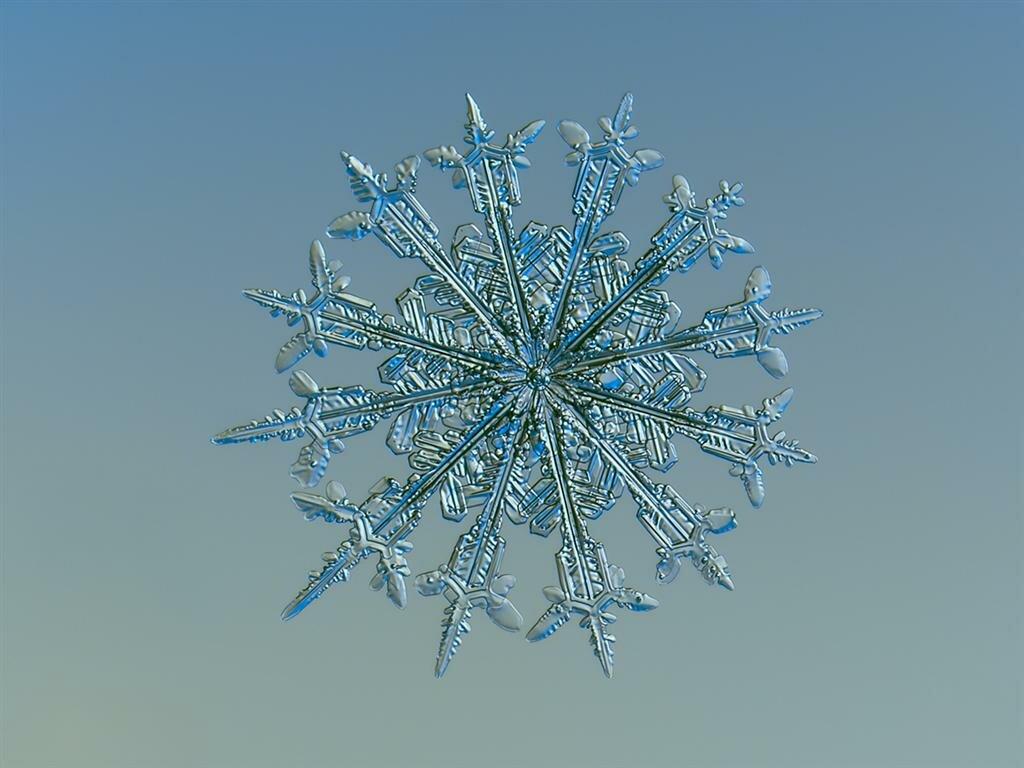 Картинки снежинок смотреть
